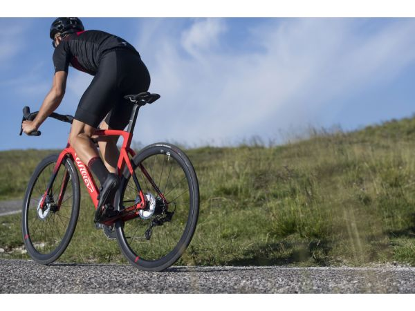 Cyklistické nohavice Wilier Rigo